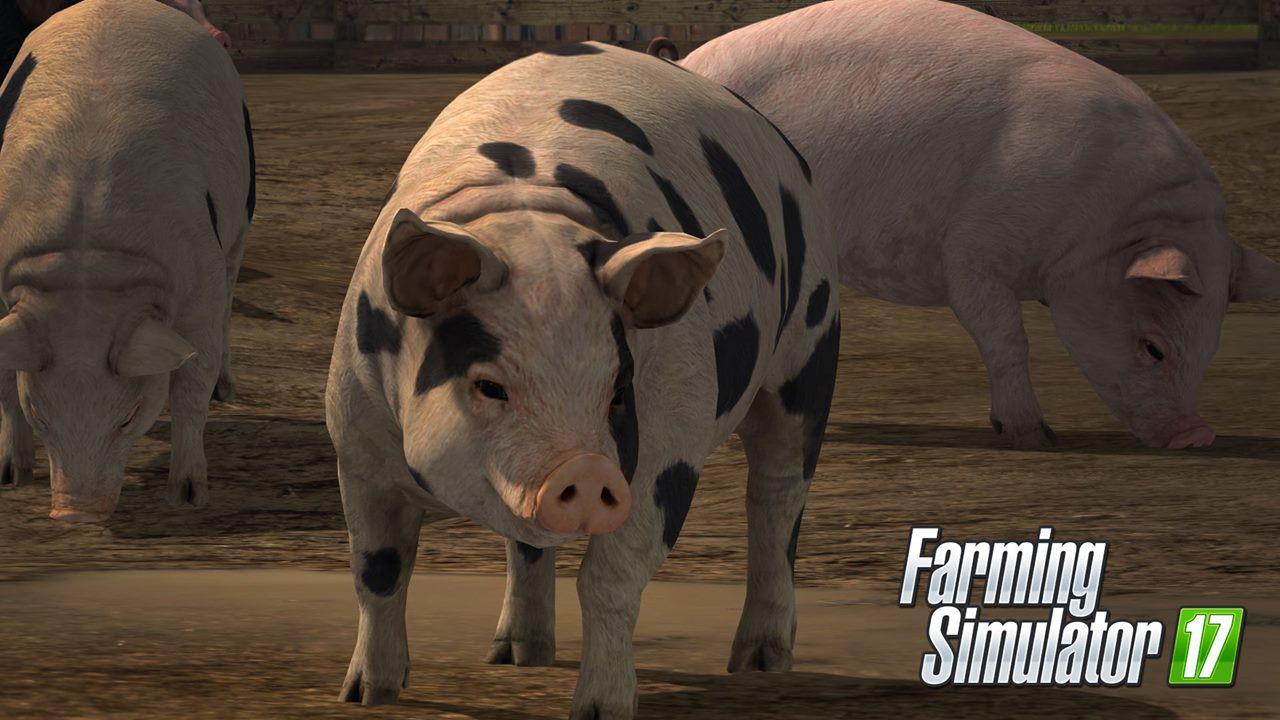 Скачать Farming Simulator 2 17 торрент