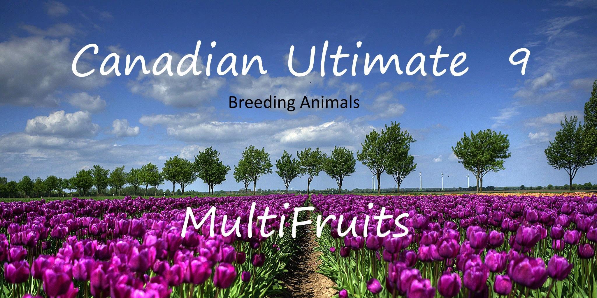 Canadian Ultimate v91 FS17 Canadian Ultimate v91