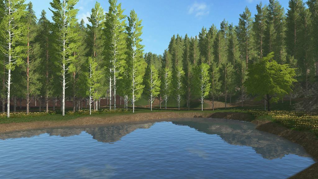 Forestry Land v1 0 0 0 FS17 - Farming Simulator 17 mod / FS